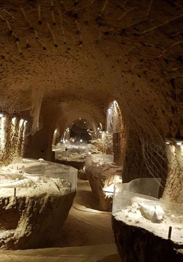 La cave aux Coquillages - Fleury-la-Rivière