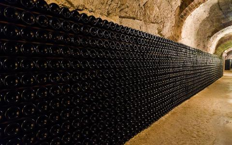 Caves de Champagne - Epernay