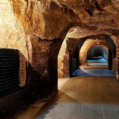 Caves Joseph Perrier - Châlons-en-Champagne