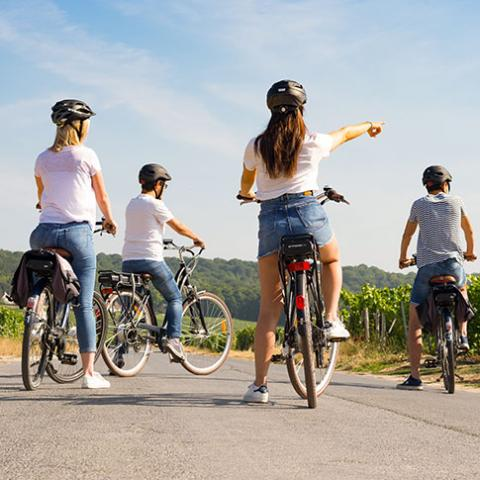 Balade à vélo à Hautvillers