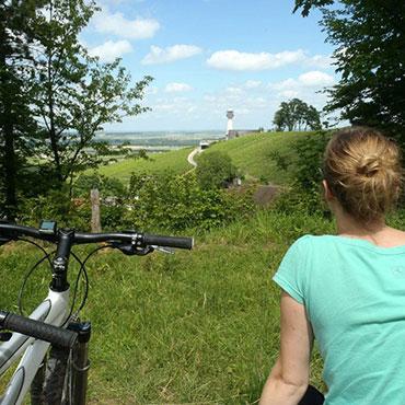 Balade à vélo - Verzenay