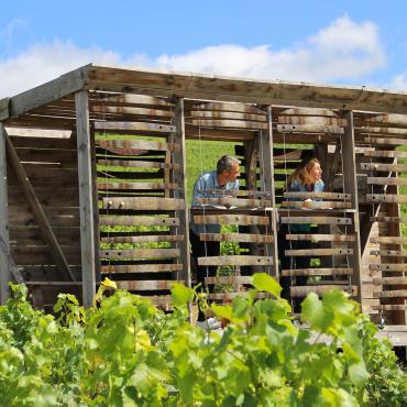 Loge de vigne dans la Marne
