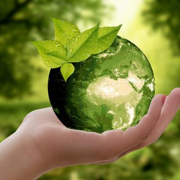 Nature durable